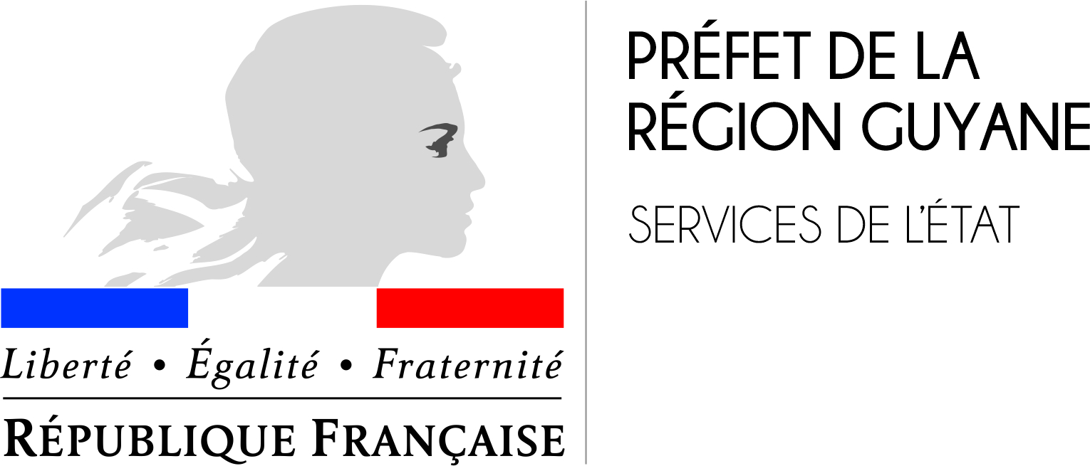 HD Logo Services de lEtat FINAL